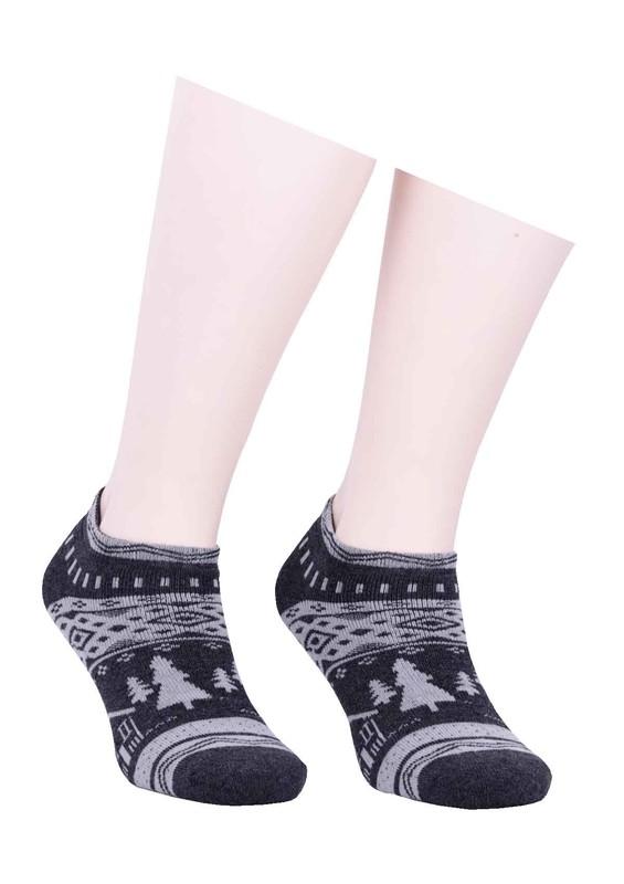 ARC - Arc Havlu Patik Çorap 213 | Füme