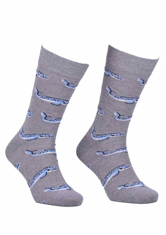 AYTUĞ - Aytuğ Balık Desenli Erkek Çorap 2433 | Gri