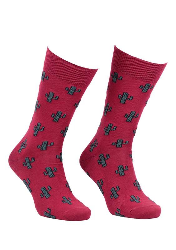AYTUĞ - Aytuğ Kaktüs Desenli Erkek Çorap 2433 | Bordo